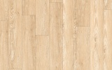 25300-160 Limed oak cream (2,5x180x1200mm)